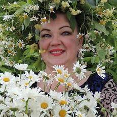 Фотография девушки Елена, 46 лет из г. Вологда